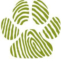 Vipps til Dyrebeskyttelsen SFJ 23068
